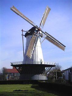 De Witte Molen te Nijmegen, is een grote ronde stenen stellingmolen, gedekt met dakleer en met een vlucht van 25,60 m. De molen dateert van 1760 en was oorspronkelijk een beltmolen, die een oudere afgebrande standerdmolen elders in Nijmegen verving. Hij had de functie looiermolen.