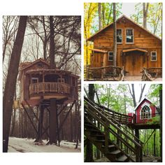 All 3 of our tree houses