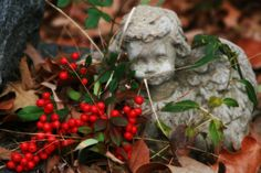 Angel with berries.  Taken in Hernando, Ms.