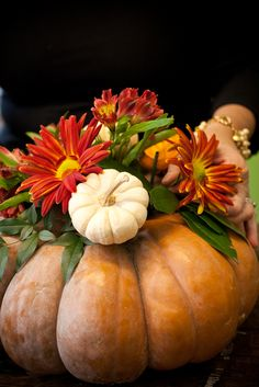 A Washingtonian Thanksgiving - Step By Step Floral Design - Holly Chapple Diy Thanksgiving Centerpieces, Pumpkin Centerpieces, Thanksgiving Table Settings, Thanksgiving Tablescapes, Thanksgiving 2017, Flower Decorations, Fall Decorations, Pumpkin Planter, Feather Centerpieces