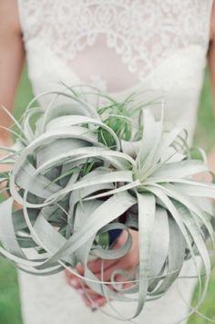 air plant wedding bouquet green blue vintage