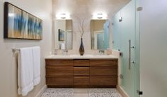 contemporary Austin, TX bathroom, glass shower, patterned tile floor, abstract horizontal blue painting, wood cabinetry