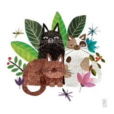 The Cats on Behance, Carmen Saldana #CatIllustration