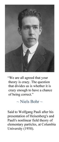 """""""We are all agreed that your theory is crazy... ~ Niles Bohr"""
