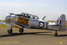 Warlock Photography: Harvards operated in South Africa South African Air Force, Korean War, Airplanes, Fighter Jets, Aviation, Photography, Design, Glove, Planes