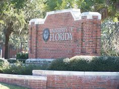 math, colleges, school, dreams, new homes, gator, place, university of florida, entrance