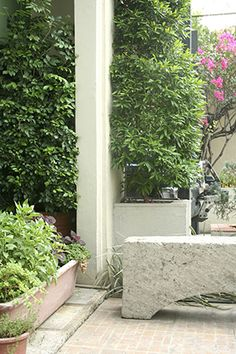 Gardening Within a Small Space Small spaces Small courtyard