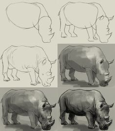 How to draw rhino or Rhinoceros. Learn to draw rhino step by step with easy to follow instruction. Again this time is another wild…