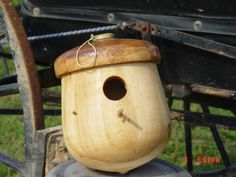 Unique Amish Handmade Country Collectible Home and Garden Solid Acorn Bird House Birdhouse In Your Soul, Bird House Feeder, Bird Feeders, Decorative Bird Houses, How To Attract Birds, Wild Birds, House 2, Acorn, Amish