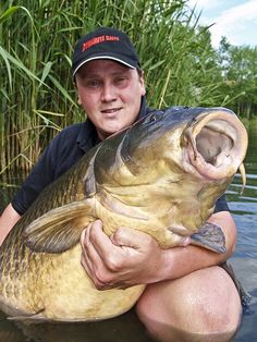 World record (?) common carp at 86lbs 6oz, caught by angler Graham Marsden