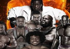 Ever noticed that there's a wee bit of racism and inequality going on in WWE and has been for years? So too has Paddy. Vulture, Black Art, Equality, Wwe, Wrestling, Statue, Anime, Movies, Movie Posters
