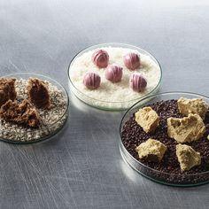 Überraschen Sie Ihre Gäste mit diesem süss-salzigen Dessert Trio: Luftschokolade | Tonka Sponge | Salz-Karamell-Praline Panna Cotta, Dessert, Cooking, Ethnic Recipes, Food, Gourmet, Caramel, Chocolate Candies, Salt