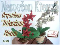 Specials flowers for a very special person. A Sumorov Sergey creation, folded and framed by Nemeton Kieran (me). Special Flowers, Origami Flowers, Special Person, Flower Arrangements, Frame, Plants, Flowers, Picture Frame, Floral Arrangements