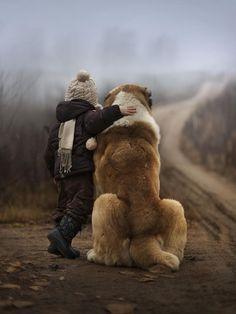 Saint bernard - 9 Dog Breeds That Love Children