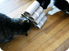Cornflower Blue: A (free!) DIY cat toy my cats actually loved... Hide the treats n the tubes for the cats to extract.