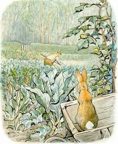 "From ""The Tale of Peter Rabbit"" written & illustrated by Beatrix Potter / Peter in Mr. McGregor's Garden- via Fresh Farmhouse"