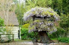 """lovely wonderland tree fort--save the stump, and create a vine-covered """"crown"""" to hide away in"""
