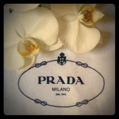"🍃❤ Lots 'n lots of Brand New Prada Dust Bags Authentic ... White, draw-string with dark navy logo, light cotton fleece, one very large: 31 x 26"".  Eleven small ones : 13 x 9"".  Brand new. 12 small ones available, Exlarge is $40, Large 13.5 x 17"" at $30.  If interested in the Large or XLarge  as shown in the listing, please let me know and I will make a separate listing for you.  $20 is the Price for one individual small one.  🍃❤️ perfect for shoes, small bags, gifts and etc. ❤️ Prada…"