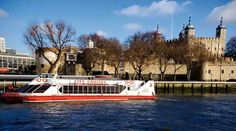 images thames river cruise | Free Thames River Cruise in London - Save £18