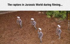 What if Jurassic World hadn't bothered to put the CGI in during post-production, and instead of a by-the-numbers action-adventure film we'd got a surrealist Jodorowskian fantasy about Chris Pratt being chased by feral men in grey morph suits? Jurassic World Raptors, Jurassic World 2015, Avatar Photo, Funny Images, Best Funny Pictures, Hilarious Photos, Random Pictures, Godzilla, Deadpool