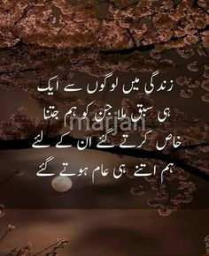 (Laiba Rana) Like my frndz😌😒😏 Urdu Funny Poetry, Poetry Quotes In Urdu, Best Urdu Poetry Images, Urdu Poetry Romantic, Love Poetry Urdu, Urdu Quotes, Qoutes, Life Quotes, Song Quotes