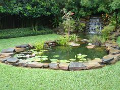 Nice Koy Pond in the #Backyard