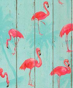 Barbara Becker Flamingo Wallpaper Teal Rasch 479706 Rasch Barbara Becker Flamingo Wallpaper Teal 479706 The post Barbara Becker Flamingo Wallpaper Teal Rasch 479706 appeared first on Tapeten ideen. Vinyl Wallpaper, White Wallpaper, Pattern Wallpaper, Funky Wallpaper, Fabric Wallpaper, Wallpaper Roll, Flamingo Bathroom, Flamingo Art, Pink Flamingos