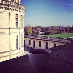 Un thé sur les terrasses