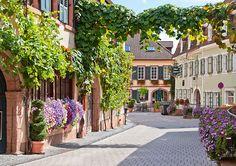 St. Martin (Rheinland-Pfalz)