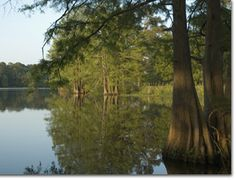 The Georgia Veterans State Park in Cordele, GA was established as a memorial to U.S. veterans. It offers beautiful scenery and historical significance.