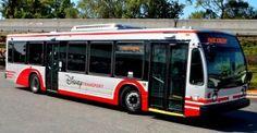 Disney testing direct bus service between Downtown Disney and Disney's Animal Kingdom