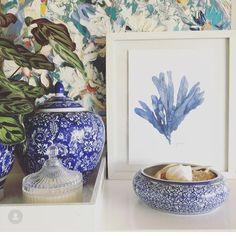"""Michelle Grayson on Instagram: """"This is one of my favourite seaweed prints from our beach and nautical series. . . . . . . . . #sproutgallery #ilovethishome…"""" White Art, Blue And White, Blue Willow China, Chanel Art, Hampton Art, White Prints, Nautical Art, Us Beaches, Coral Blue"""