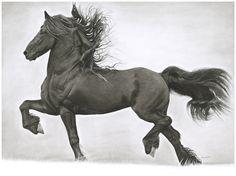 Horse Head, Horse Art, Pretty Horses, Beautiful Horses, Painted Pony, Black Horses, Friesian Horse, Lovely Creatures, Equine Art