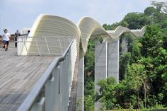 Telok Blangah Hill Park, Singapore - Pedestrian bridges and suspended walkways 120 ft. above the forest floor.