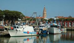 Fisherman harbour