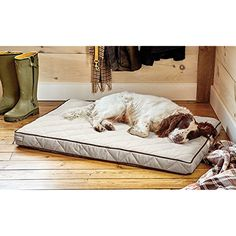 Orvis Airfoam Platform Dog Bed Cover / Small Dogs Up To 40 Lbs., Sandstone -- For more information, visit image link. (This is an affiliate link) #DogBeds