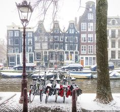Winter along the canal. Amsterdam.
