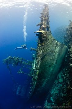"""Underwater Adventure """"Upright Shipwreck"""" at Nono Lagoon, Solomon Islands. This tuna boat ran into the reef then slid down the drop-off until it came to rest upright on a deep ledge. Underwater Photos, Underwater Photography, Underwater Shipwreck, Titanic Underwater, Travel Photography, Abandoned Ships, Abandoned Places, Tuna Boat, Ocean Life"""