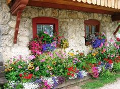 love the stone framed with red.... colorful flowers in foundation bed
