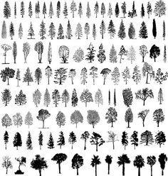 tree types Silhouettes - Buscar con Google