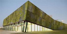 Concreto biológico cria fachadas verdes naturalmente.