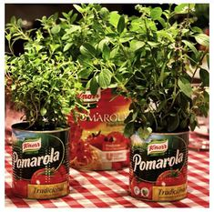 Tomatoe cans and basil plants as center pieces. Cut for our little Italy party Diy Birthday Food, Birthday Dinner Recipes, Pizza Party Birthday, Birthday Dinners, Happy Birthday, Italian Party Decorations, Italian Centerpieces, Party Centerpieces, Centerpiece Decorations