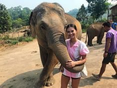 I was a little scared but that is irrelephant. Today was so surreal feeding these rescued elephants in Chiang Mai🐘🇹🇭