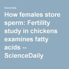 How females store sperm: Fertility study in chickens examines fatty acids -- ScienceDaily