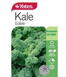 Vegetable Garden, Kale, Seeds, Vegetables, Collard Greens, Vegetables Garden, Vegetable Recipes, Vegetable Gardening, Veggie Gardens