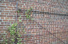 mur en brique et grille ancienne. Location de lieu insolite pour shooting photo : une étable avec mur de briques blanchies et sol brique.