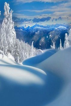 Mt Seymour Vancouver, BC Canada by Kevin McNeal