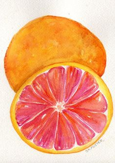 Texas Red Grapefruit Watercolor Painting by SharonFosterArt