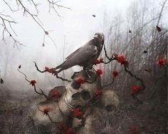 Crow with skulls