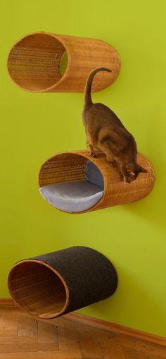 Modern cat scratcher Rondo, a unique cat condo tree and cat home. Bb Chat, Cat Shelves, Cat Playground, Cat Cave, Cat Enclosure, Cat Climbing, Cat Scratcher, Cat Condo, Cat Room